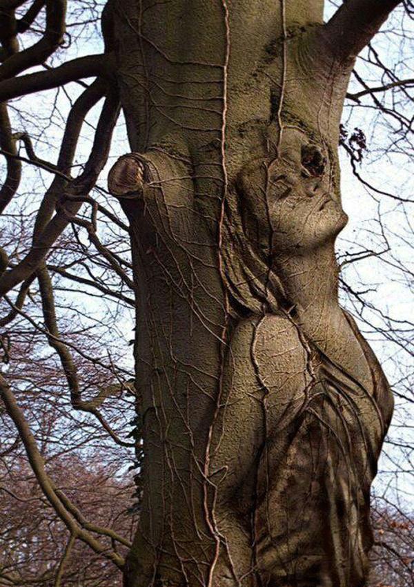 Female body Painting  ideas trees