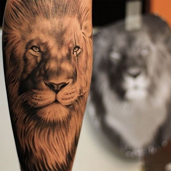Best Lion Tattoos For Men and guys ideas