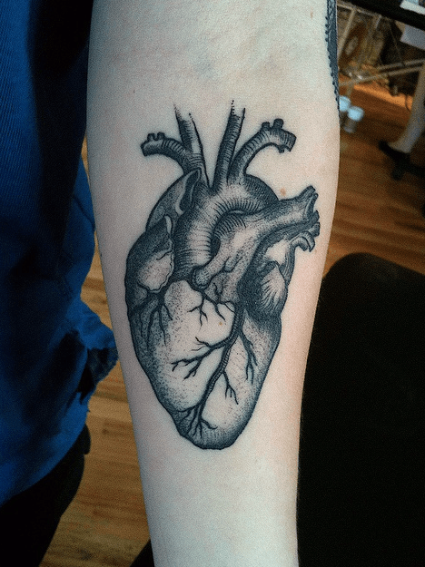 Anatomical Heart Tattoo Designs For guys