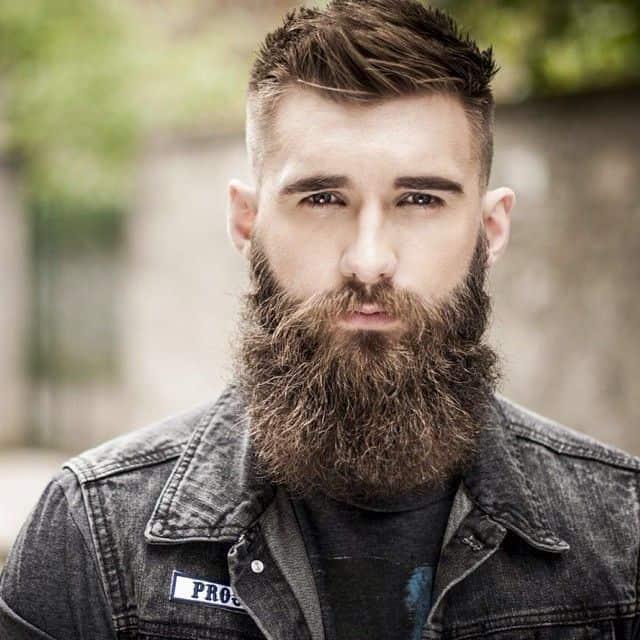 long modern beard styles picture