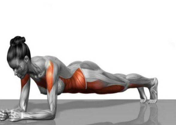 The plank are one of the better workout