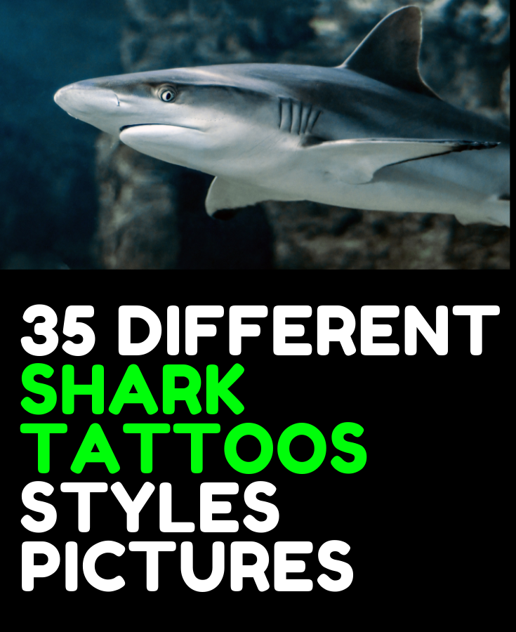 35 DIFFERENT SHARK TATTOOS STYLES PICTURES FOR MEN THAT ARE FANTASTIC