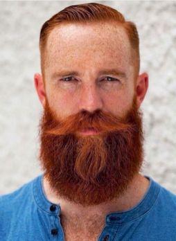 creative beard  medium length
