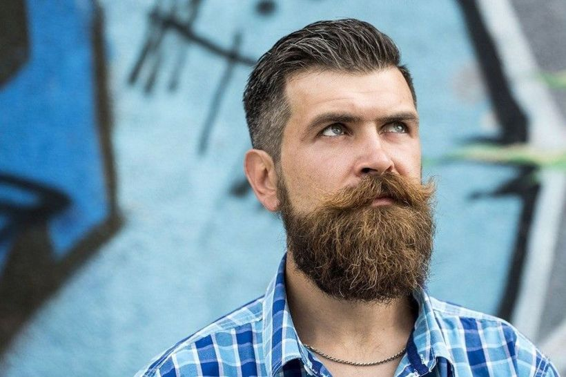 mens beard styles short