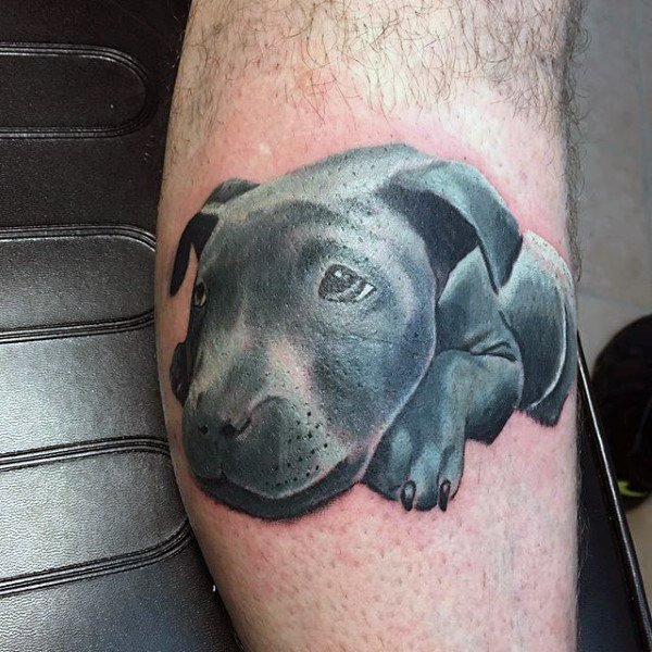 black temporary tattoos for dogs on arm
