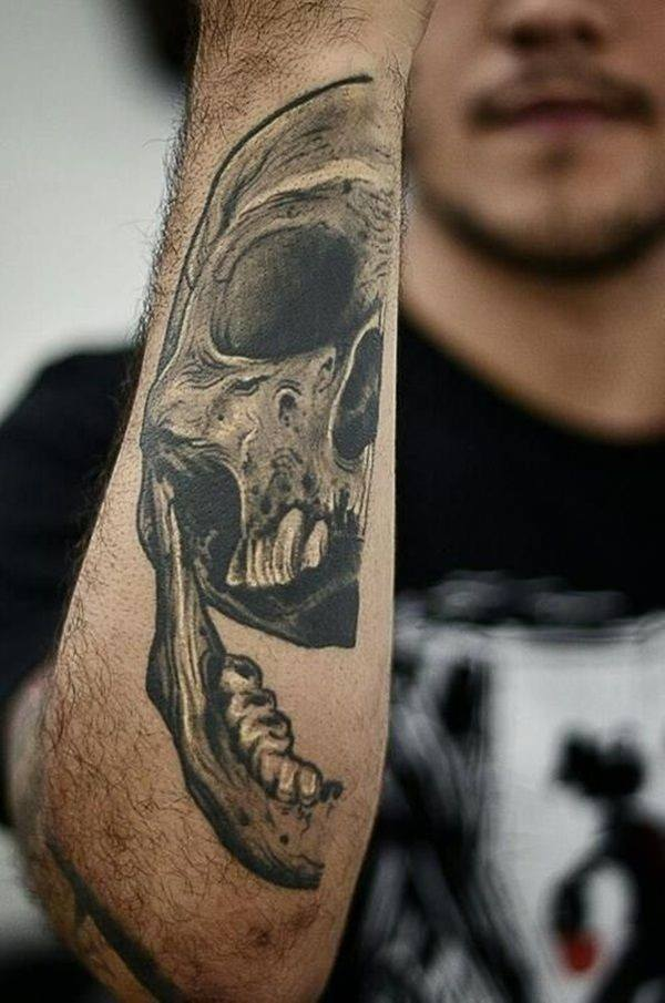 different skull types arm tattoo design