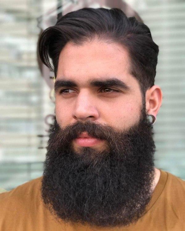 best long beard grooming style images