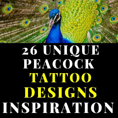 26 UNIQUE PEACOCK TATTOO DESIGNS INSPIRATION YOU CAN TRY