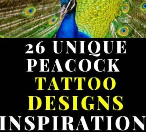 26 UNIQUE PEACOCK TATTOO DESIGNS FOR FEMALES YOU TRY