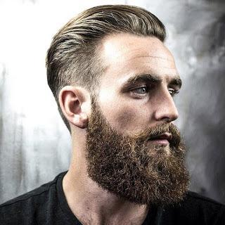 best beard for long face images