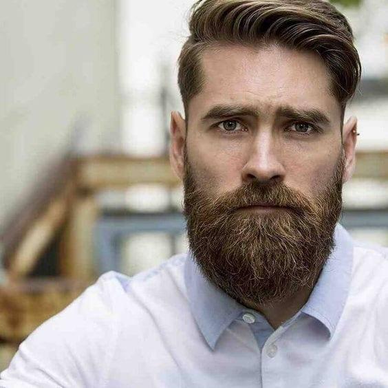 long horseshoe mustache for men